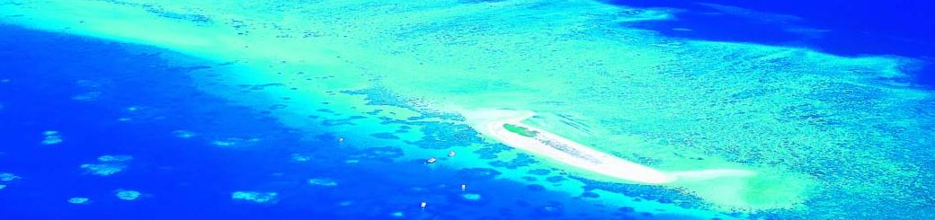 Michaelmas Cay, Cairns Travel