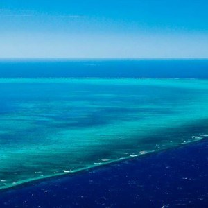 60 minute Helicopter Reef Rainforest Scenic Flight